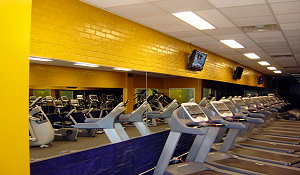NYC General Contractor Inc - Force Flex Gym